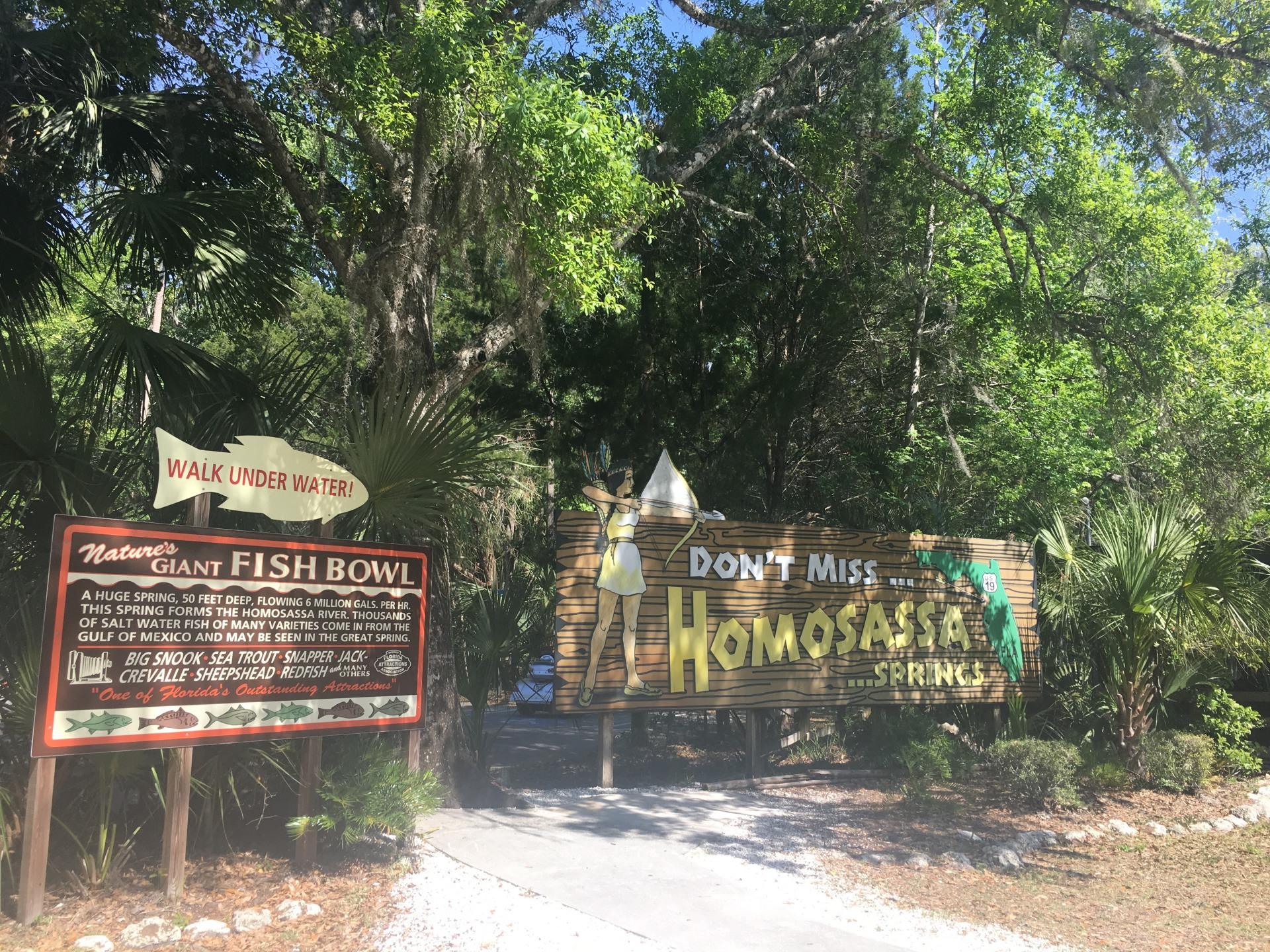 Tour of Homosassa Springs Wildlife State Park, Florida!!!!