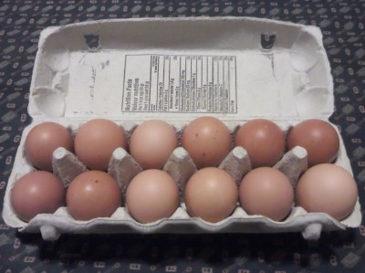 dozen of farm fresh eggs