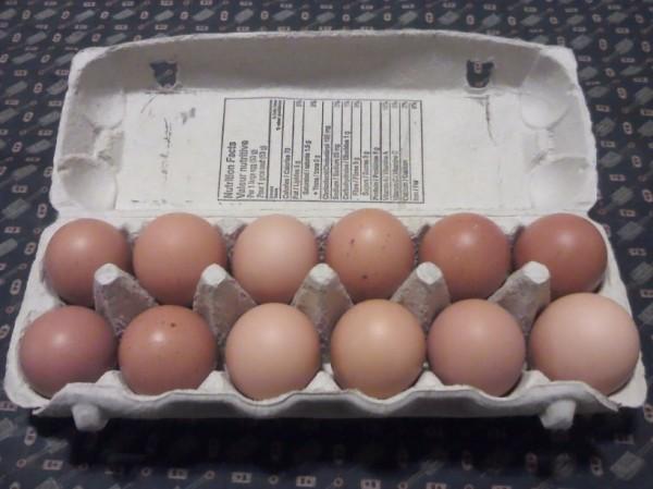 dozen of farm fresh eggs