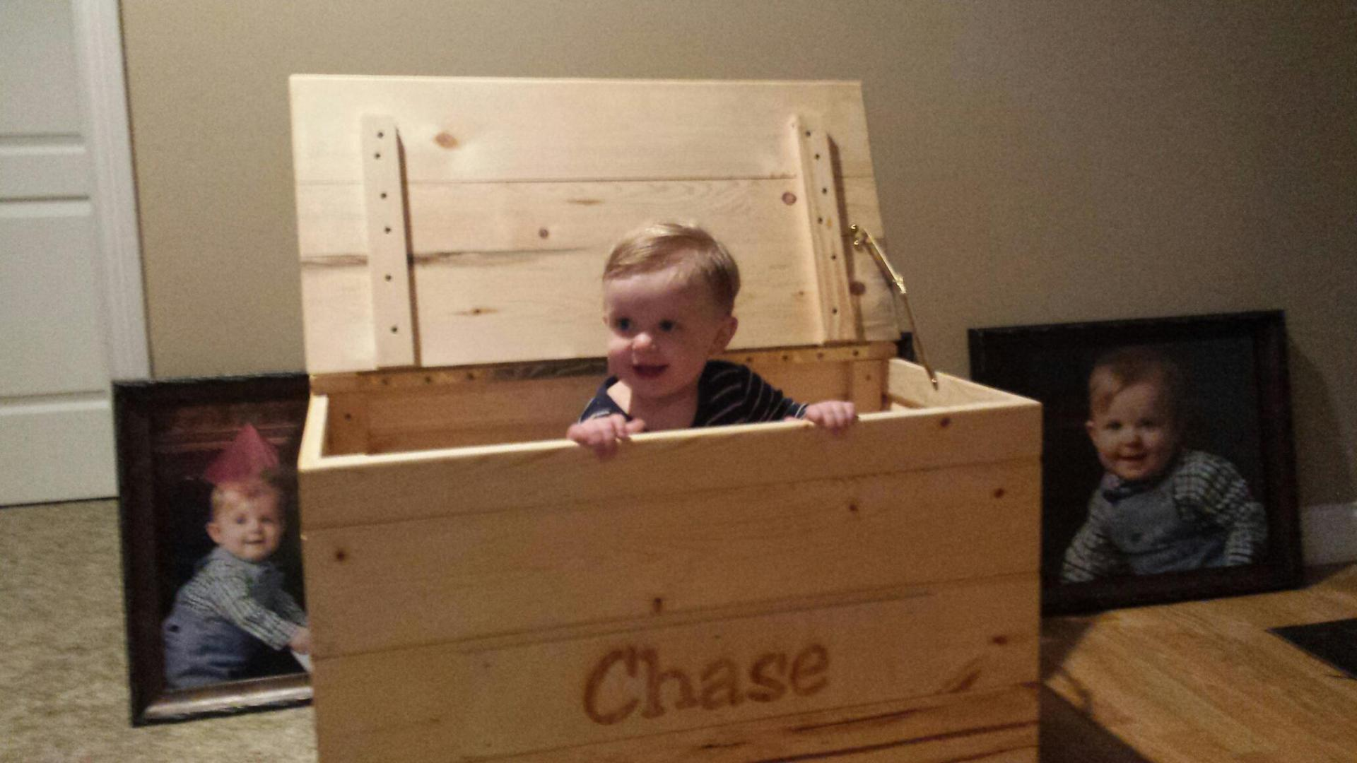 Custom Toy Box (Special Order for Grandson)