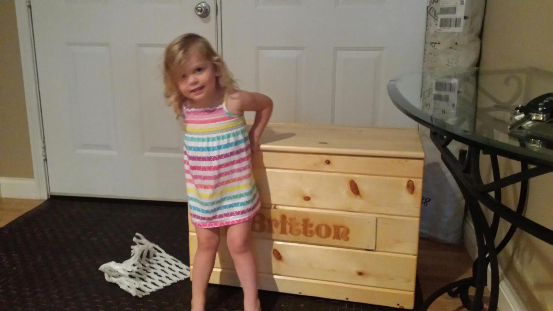 Custom Toy Box (Custom Order for Grandaughter)