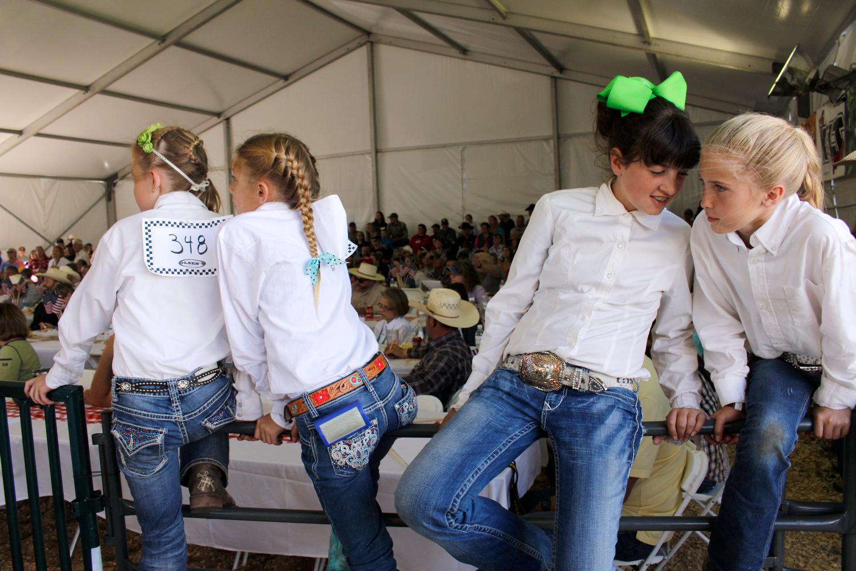 County Fair, Flagstaff, AZ