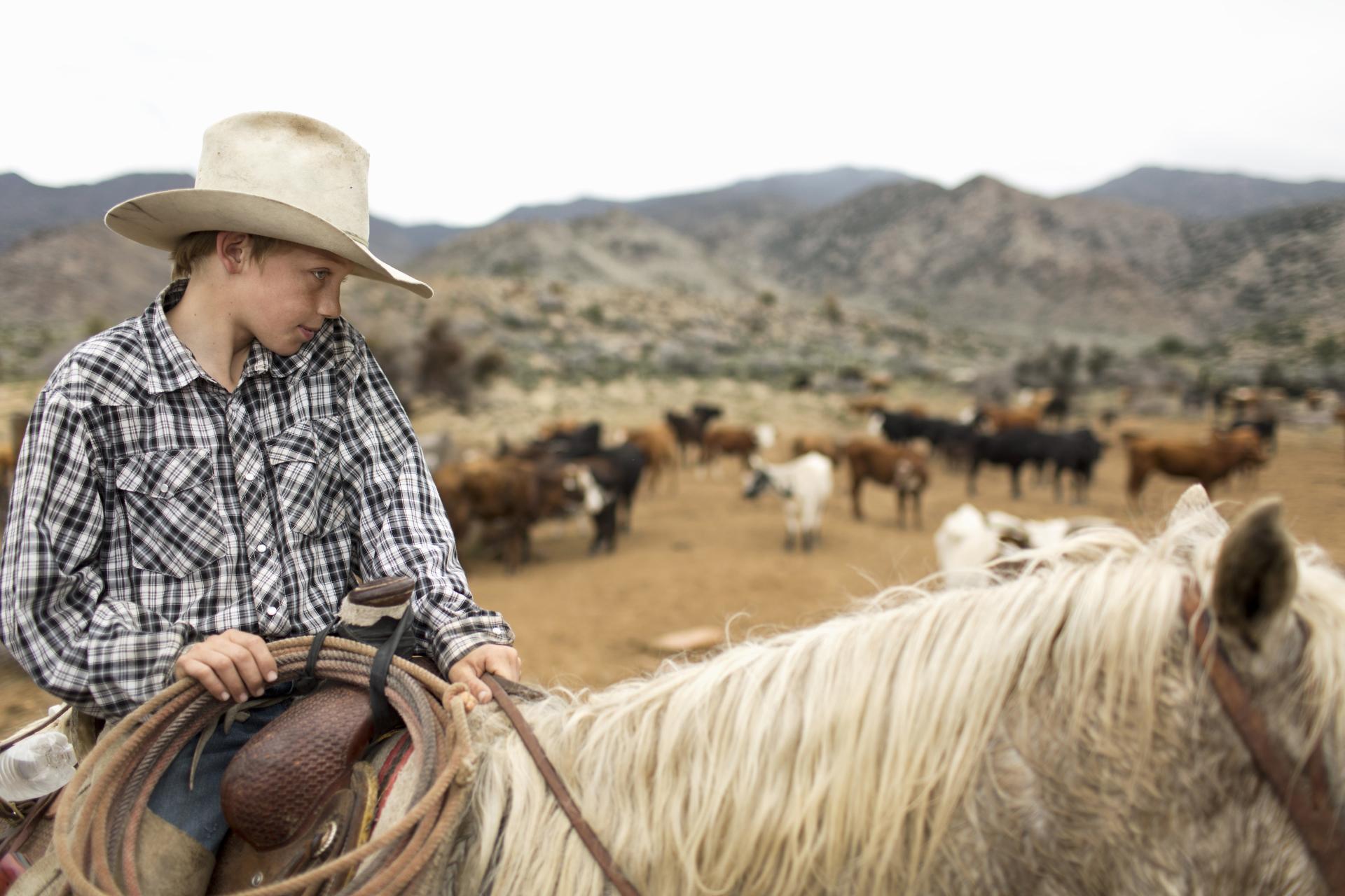 Trulin Johnston - La Cienega Ranch