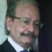 Prof. Dr. El Namaki