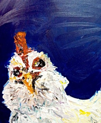 chicken - 16 x 20 - oil -  SOLD
