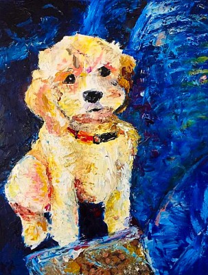 goldendoodle - 16 x 20 - oil - COMMISSIONED