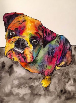 english bull dog - 9 x 12 - watercolor/ink - COMMISSIONED