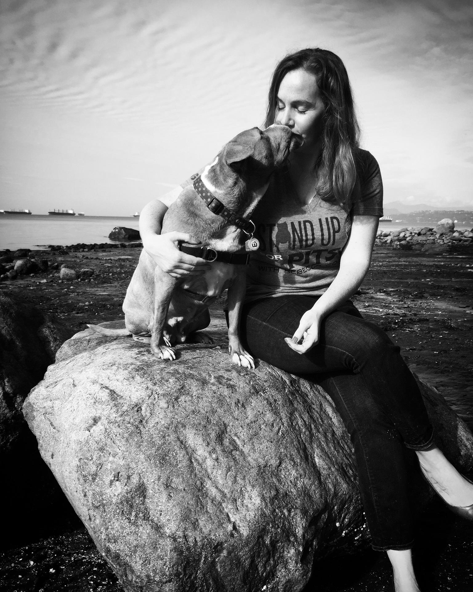 lexy the elderbull; senior dog; pitbull love; elderbull;