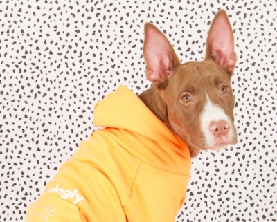 adopt dont' shop; animal rescue; adopt a rescue dog; nair and bjorn