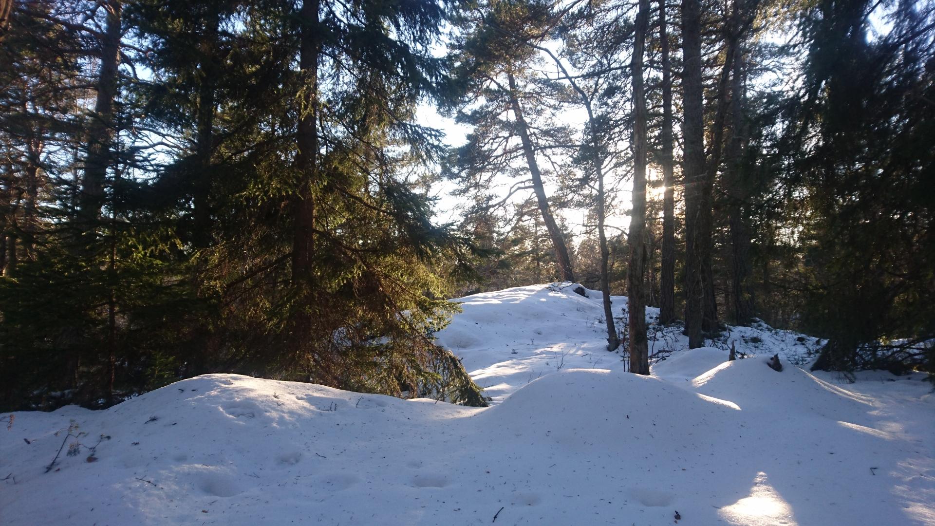 THE LONGEST WINTER // START OF THE SPRING SEASON
