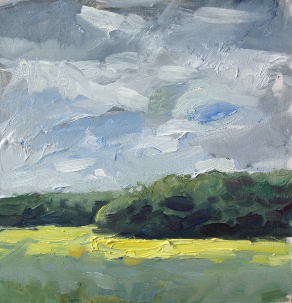 Oil seed rape fields, Whittlesford, Cambridge