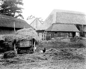Splash Farm Barn 1890's.