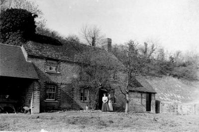Splash Farm 1900