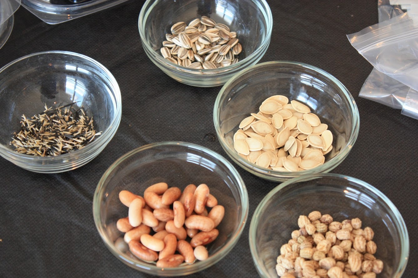 Children's Seed Pot Party