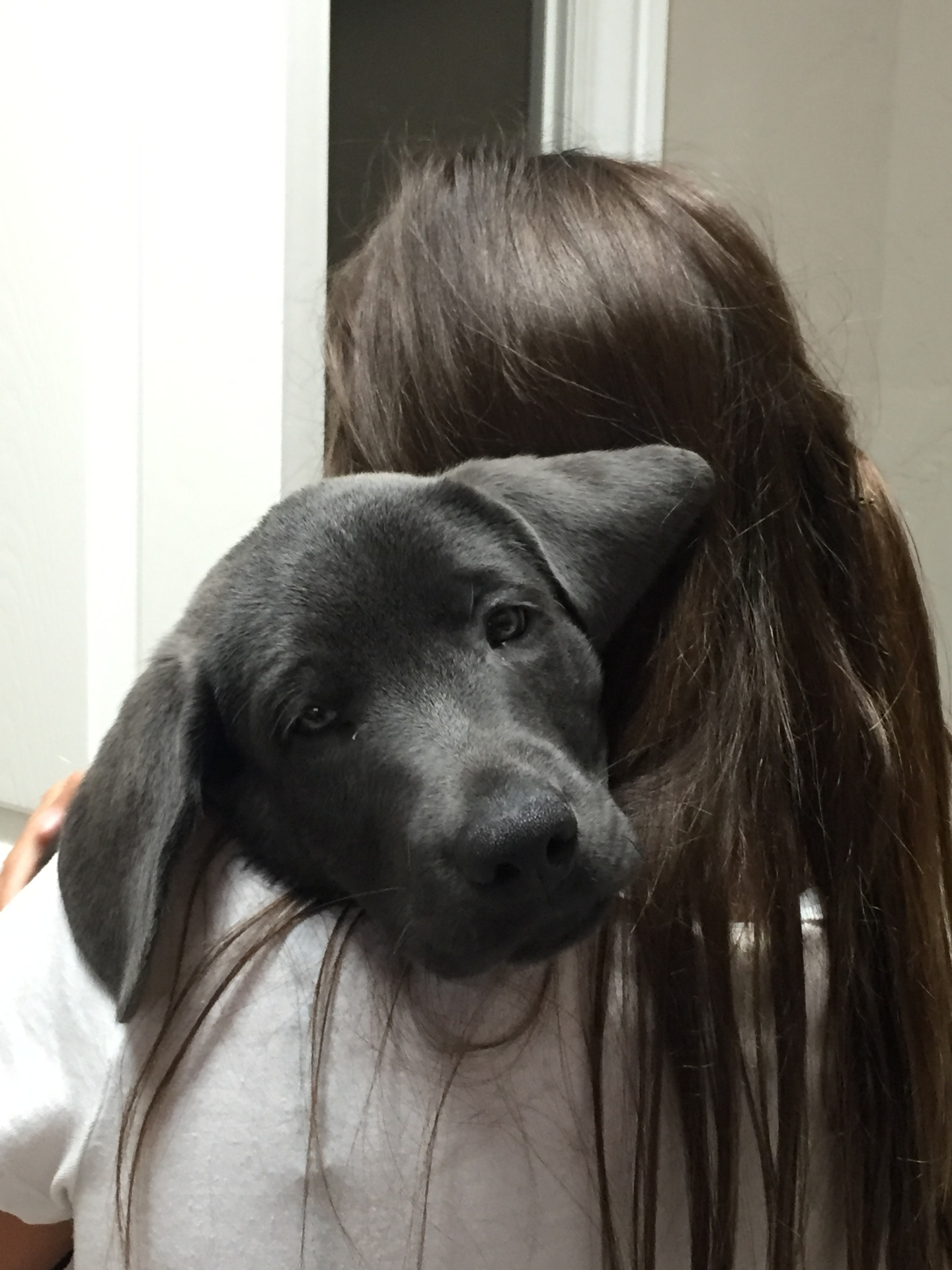Mia x Duke