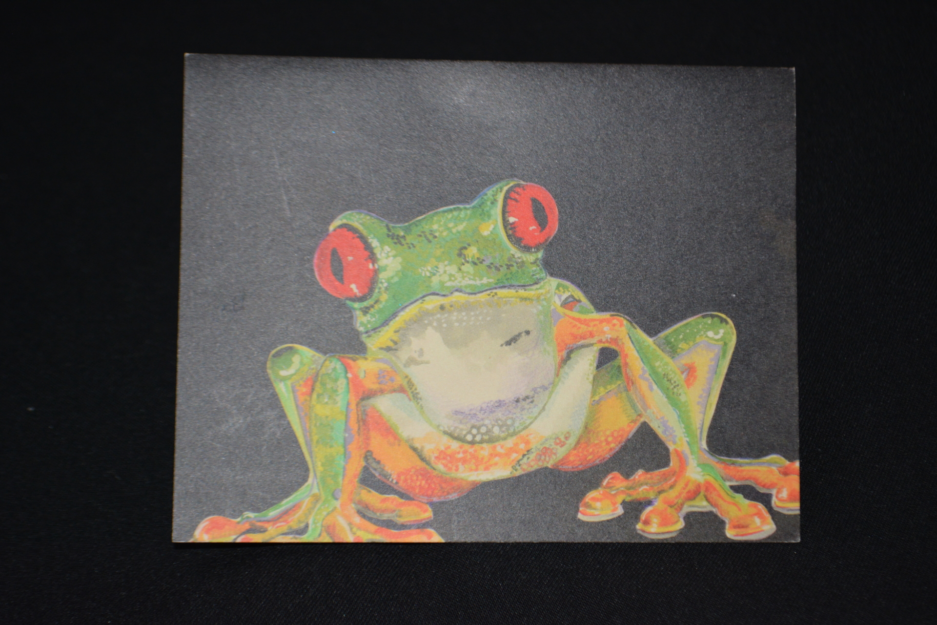 Red eye tree frog Greetings card