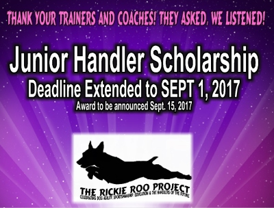 Rainbow Bridge AND Scholarship Update