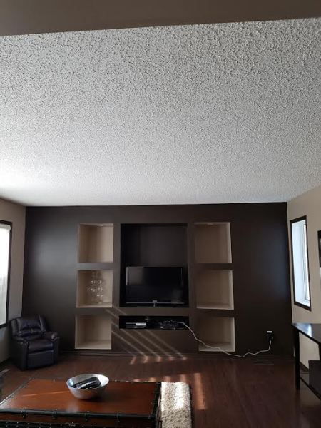 Before - Entertainment renovation