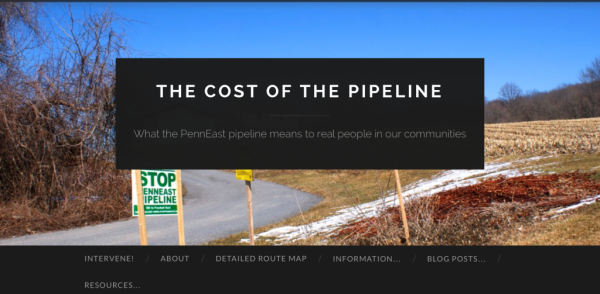 Cost of the Pipeline