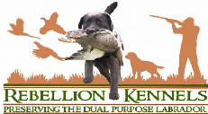 Rebellion Kennels