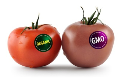 How GMO's Cost More in the Long Run