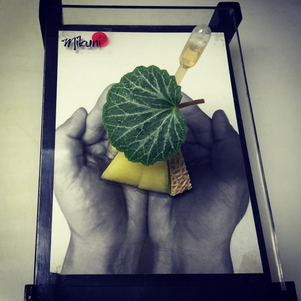 Shizuoka Musk Melon