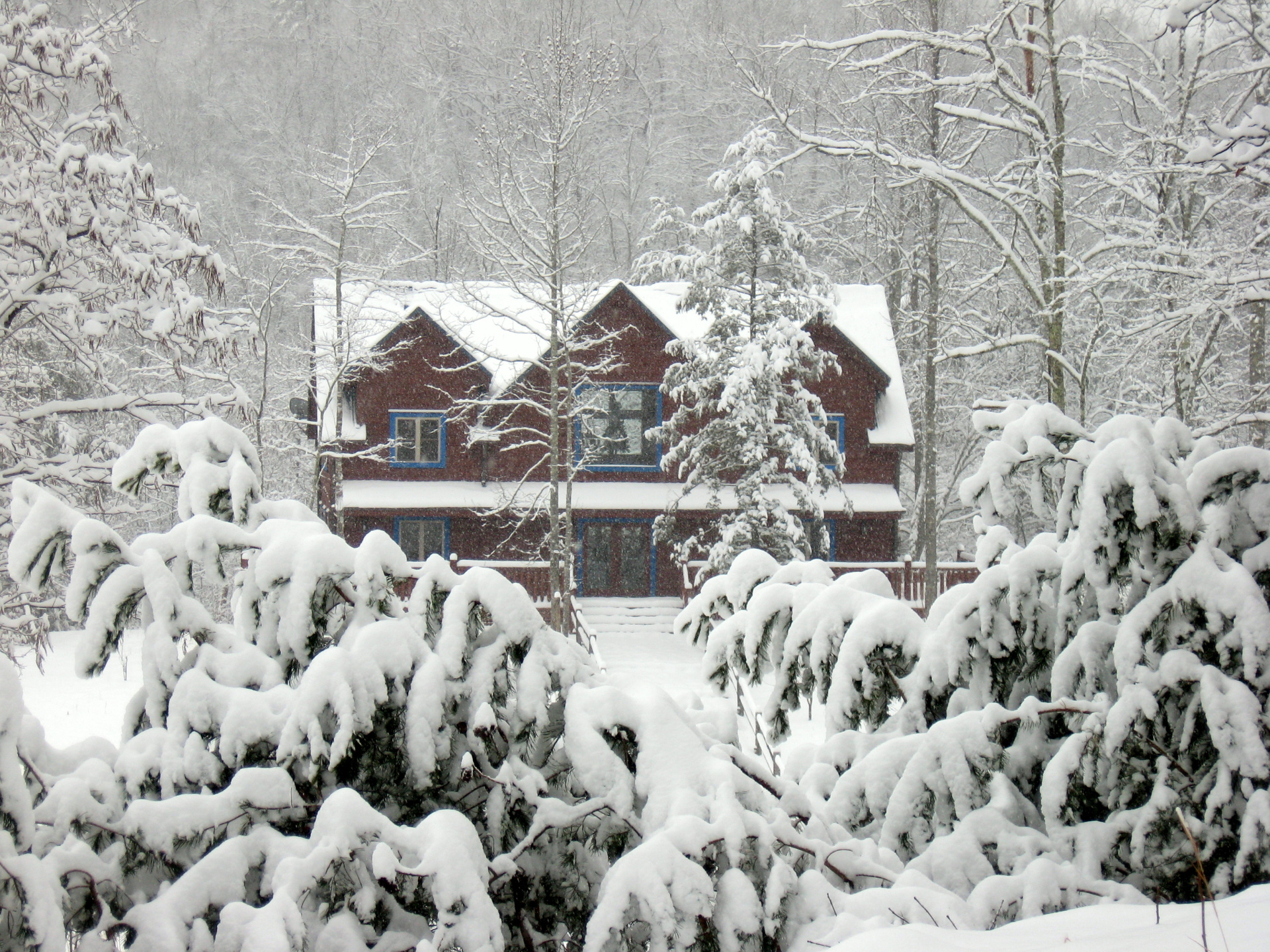 Blue Mountain Lodge - Snowy Christmas Day. Winter wonderland in the Smokies