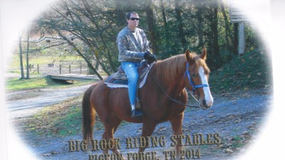 blue mountain cabins to do smoky mountains horse back riding
