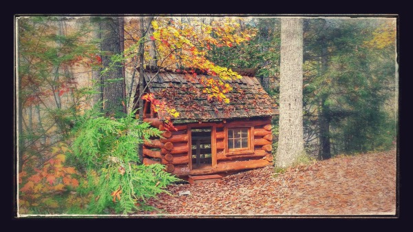 Appalachian Escape Cabin outside