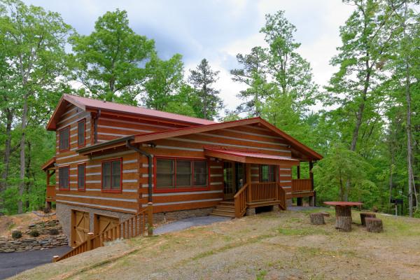 Appalachian Escape cabin Side yard with picnic area