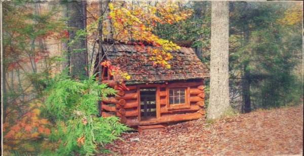"""Little log cabin"" playhouse for the kids in secluded back yard"