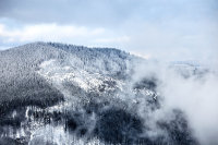 Smokies in snow