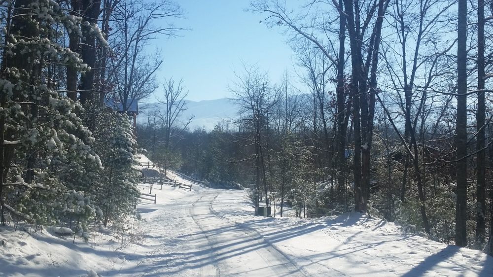 Snowy January day in the Smoky Mountains