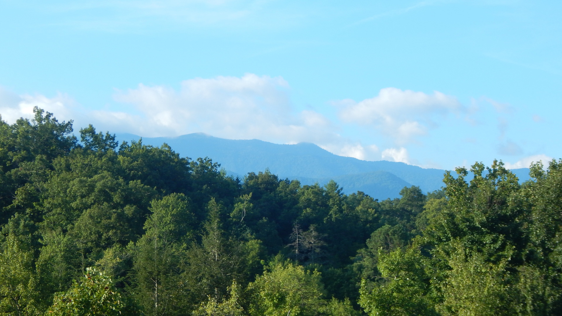 private Smoky mountains cab in with a view