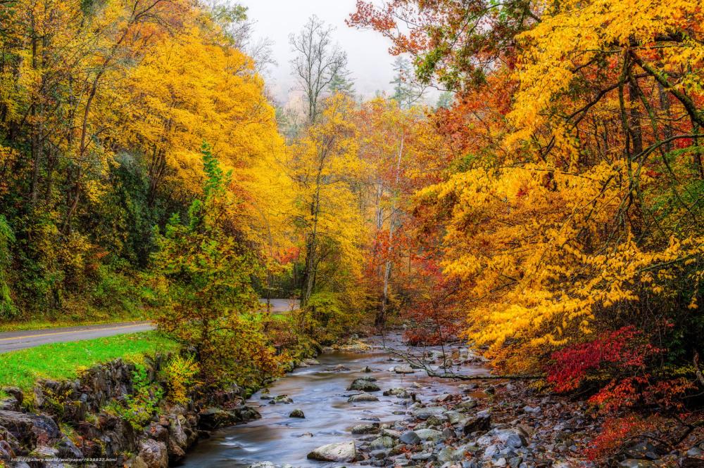2018 Smoky Mountains Foliage Forecast