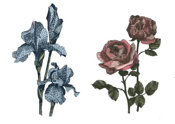 freelance illustration, zentangle iris, patterned iris, iris sketch, patterned rose, floral illustration, zentangle illustration, line art, hand drawn, handmade, zentangle floral, intrixate pattern, patterned flower
