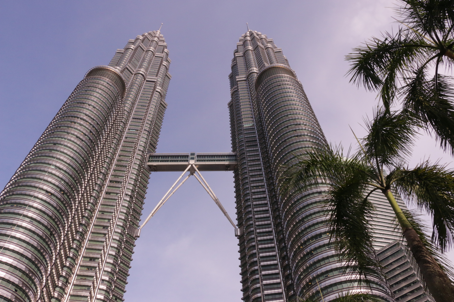Petronas Towers Snapshot