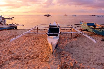 thresher sharks, travel nation, travel Philippines