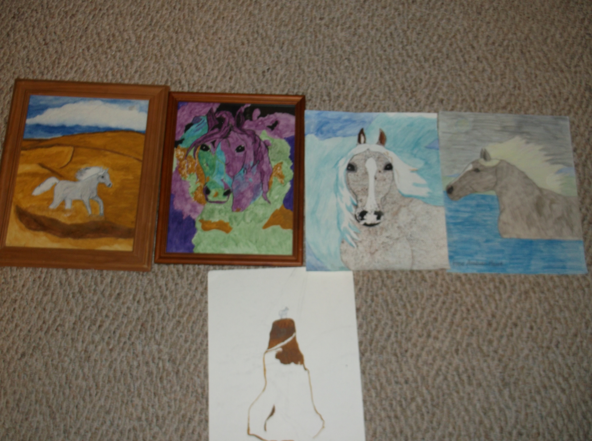Horse Pictures For Sale