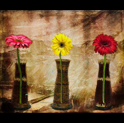 Trio Of Gerberas