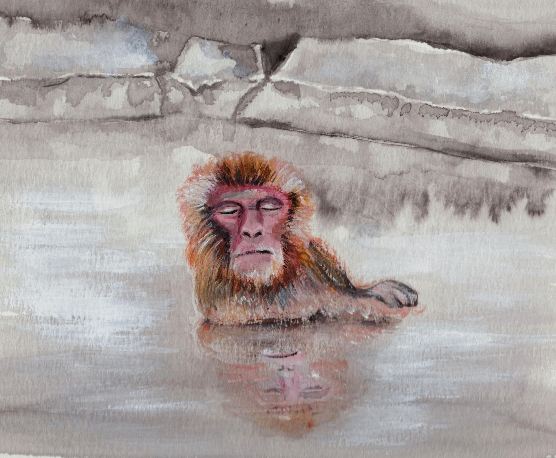 Bathing Monkey