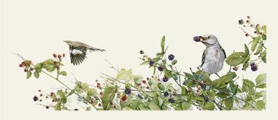 """Juicy Breakfast""- Mockingbirds & Blackberries $3,600"
