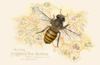 """Working Behind the Scenes""    honeybee - gouache, pencil and pastel    $2800"