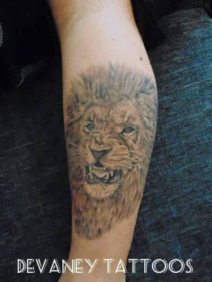 First lion i did