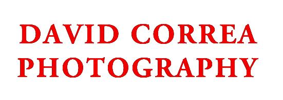David Correa Photography