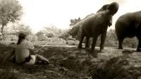 elephant marketing water