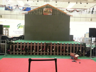 Customised Stage and backdrop