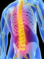 Spinal & Posture Screening