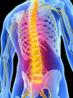 Spinal & Posture Screening