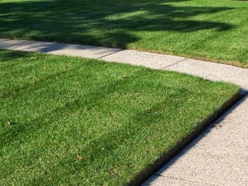 Pre-Spring Lawn Care